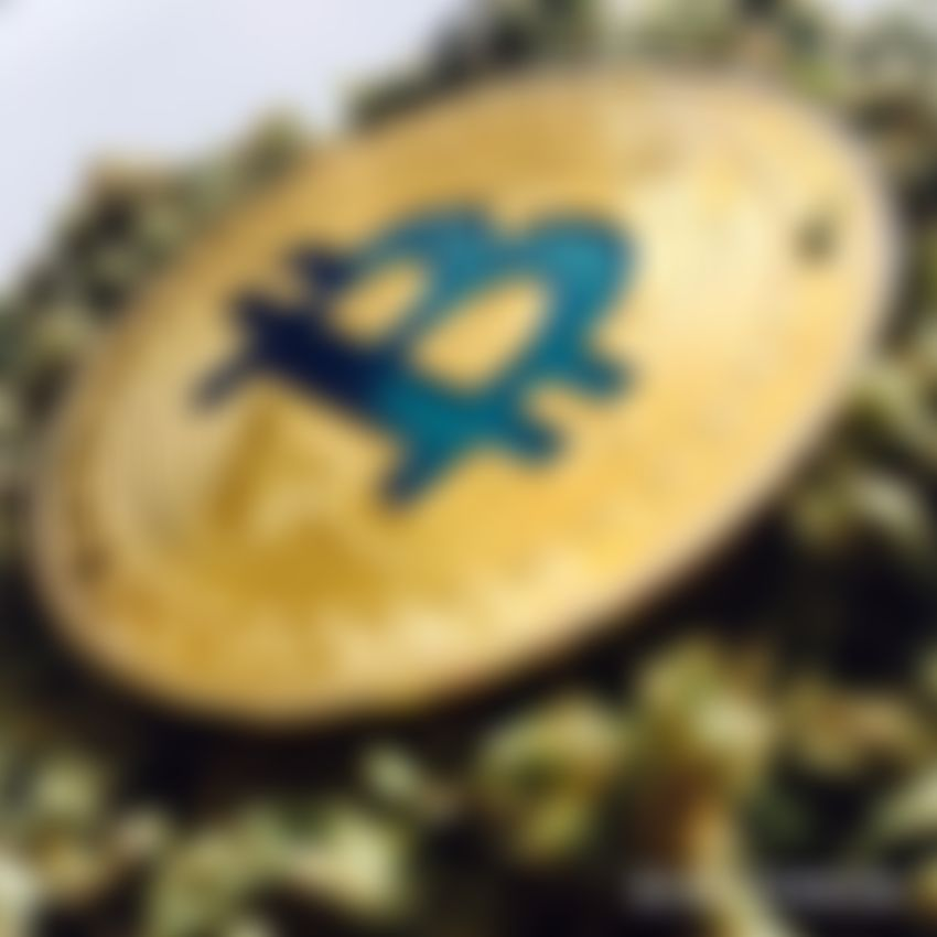 """Man Arrested in The US For Selling 9.99 BTC in Exchange For """"Hash Oil"""""""