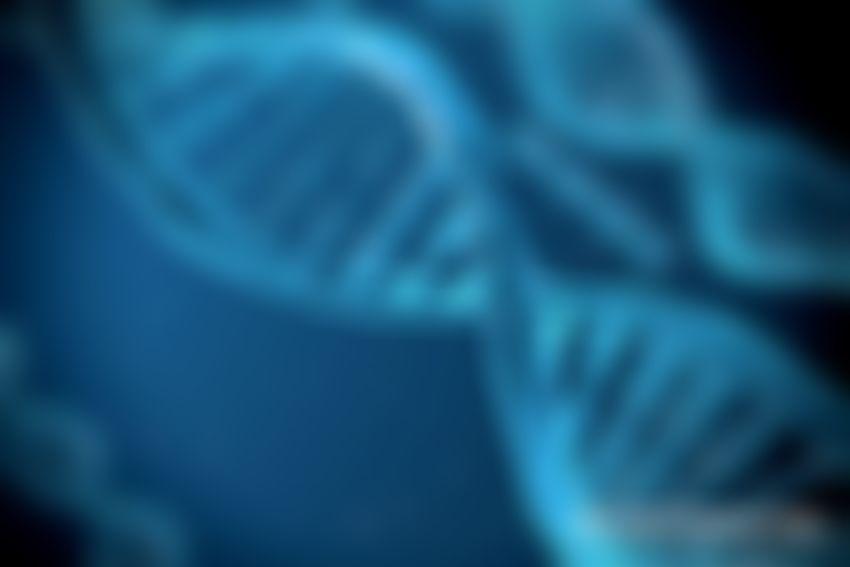 PhD Student Won DNA Deciphering Contest, Receiving Bitcoin as an Award