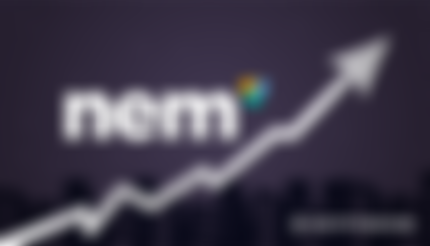NEM Cryptocurrency Is A Possible Leader Of 2018